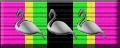 Kinko Flamingo Veteran Level 3